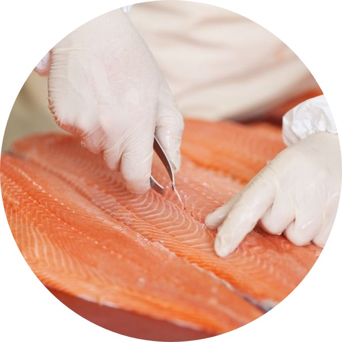 Seafood Processing Training
